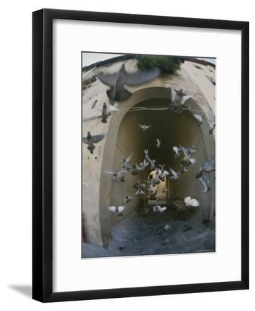 A Flock of Pigeons Fly out of an Arched Passageway in Siena, Italy-Raul Touzon-Framed Photographic Print