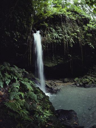 A Waterfall in a Lush Tropical Setting--Framed Photographic Print