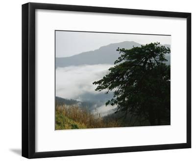 Fog in Valley Below Old Rag Mountain-Raymond Gehman-Framed Photographic Print