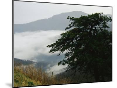 Fog in Valley Below Old Rag Mountain-Raymond Gehman-Mounted Photographic Print