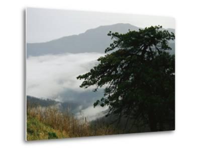 Fog in Valley Below Old Rag Mountain-Raymond Gehman-Metal Print