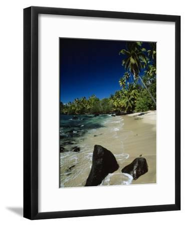 Water Surging onto a Palm Tree-Lined Beach-Tim Laman-Framed Photographic Print