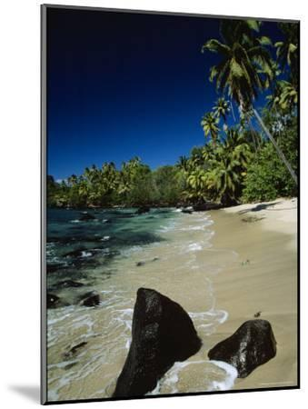 Water Surging onto a Palm Tree-Lined Beach-Tim Laman-Mounted Photographic Print