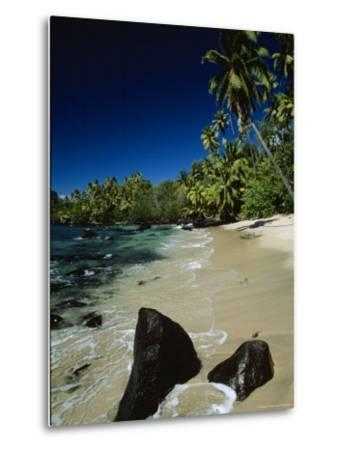 Water Surging onto a Palm Tree-Lined Beach-Tim Laman-Metal Print