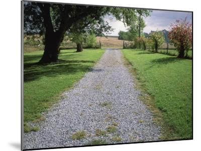 A Gravel Road Marks the Entrance/Exit to Waveland Farm in Nebraska-Joel Sartore-Mounted Photographic Print