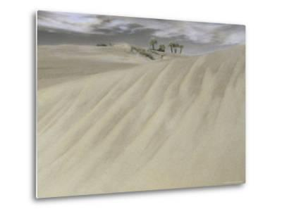 A Massive Sand Dune Dwarfs Trees on a Barrier Island-Annie Griffiths-Metal Print