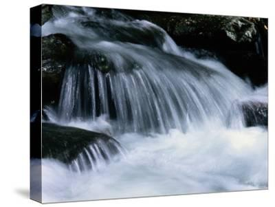 Close View of a Small Waterfall-Bates Littlehales-Stretched Canvas Print