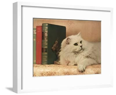 A Cat Rests Near a Stack of Books-Willard Culver-Framed Photographic Print