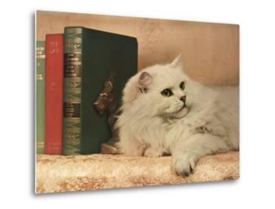 A Cat Rests Near a Stack of Books-Willard Culver-Metal Print