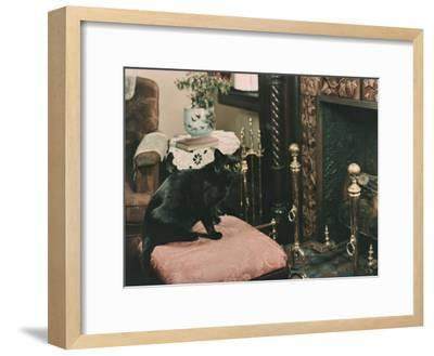 A Cat is Perched on an Ottoman in Front of a Fireplace-Willard Culver-Framed Photographic Print