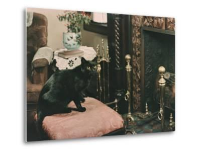 A Cat is Perched on an Ottoman in Front of a Fireplace-Willard Culver-Metal Print