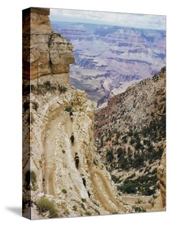 A Muleback Party Comes up the Kaibab Trail-Justin Locke-Stretched Canvas Print