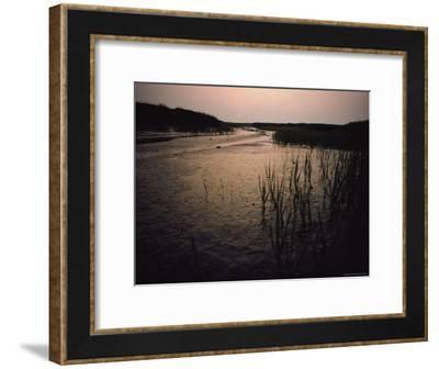 The Sun Rises over a Salt Marsh in Maine-Bill Curtsinger-Framed Photographic Print