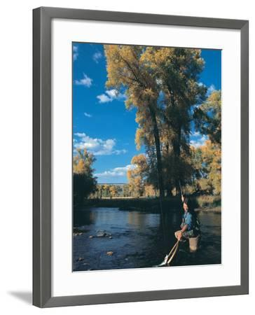 Woman Fly Fishing in Co, Holding Fish-Paul Gallaher-Framed Photographic Print