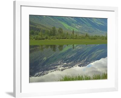 Moose Lake, Mt. Robson Provincial Park, Canada-Keith Levit-Framed Photographic Print