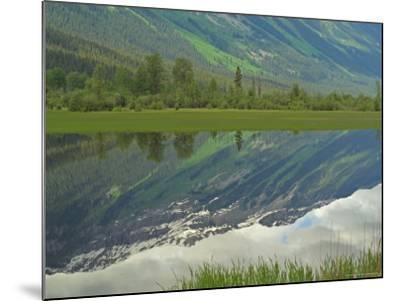 Moose Lake, Mt. Robson Provincial Park, Canada-Keith Levit-Mounted Photographic Print