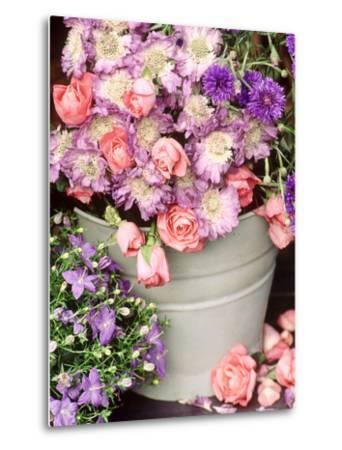 Summer Flowers in Bucket, Rosa, Scabiosa, Centaurea, Campanula-Lynne Brotchie-Metal Print
