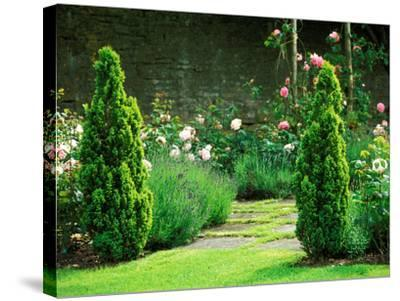 Country Garden Filled with Roses and Borders with a Pond and Old House, Wiltshire-Lynn Keddie-Stretched Canvas Print