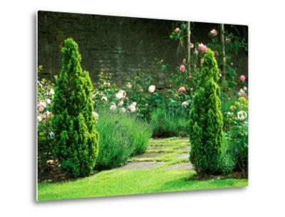 Country Garden Filled with Roses and Borders with a Pond and Old House, Wiltshire-Lynn Keddie-Metal Print