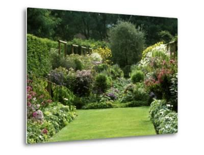 Autumn Garden, Aster, View to Seat Under Pyrus, Aster in Border, Wooden Support, France-Michele Lamontagne-Metal Print