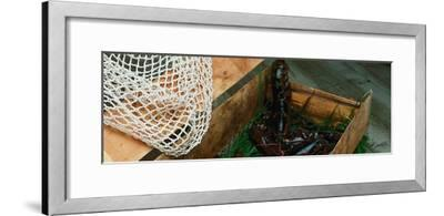 Lobsters-Martin Fox-Framed Photographic Print