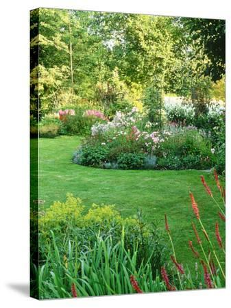 Island Beds Planted with Lychnis, Rosa, Caltha Palustris (Kingcups), Iris & Polygonium-Sunniva Harte-Stretched Canvas Print