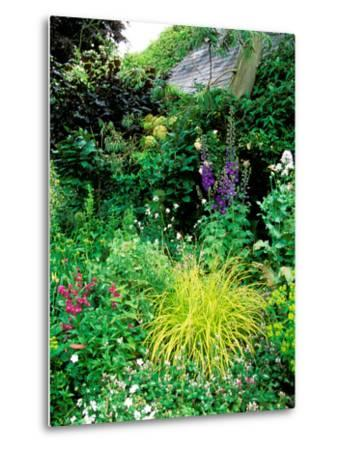Country Garden with Colourful Perennials, Pond, Greenhouse and Statues, Sharcott Manor, Wiltshire-Lynn Keddie-Metal Print