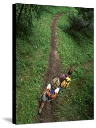 High Angle View of a Young Couple Hiking on a Forest Trail--Stretched Canvas Print