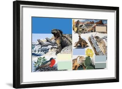 The Galapagos Islands-Arthur Oxenham-Framed Giclee Print