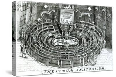 The Anatomy Theatre--Stretched Canvas Print