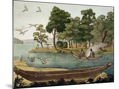Navigation in New Holland, Engraved Fumagalli, Collection of Early 19th Century Travel Books-Sydney Parkinson-Mounted Giclee Print