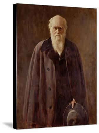 Portrait of Charles Darwin-John Collier-Stretched Canvas Print