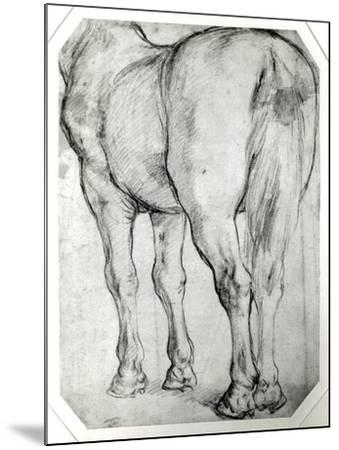 Horse's Rear-Peter Paul Rubens-Mounted Giclee Print