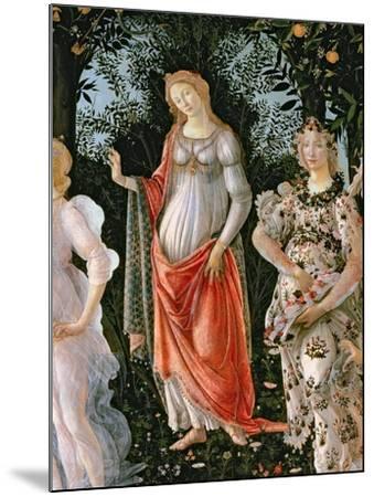 Primavera, c.1478-Sandro Botticelli-Mounted Giclee Print
