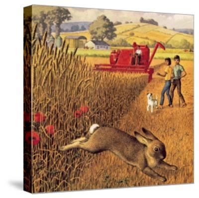 Harvest Time-Ronald Lampitt-Stretched Canvas Print