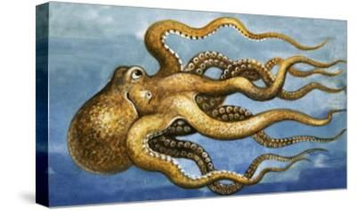 Octopus--Stretched Canvas Print