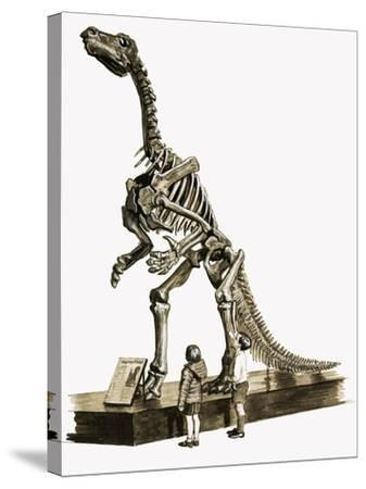 In the Days of the Dinosaurs: A Hundred Million Year Old Mystery-Roger Payne-Stretched Canvas Print