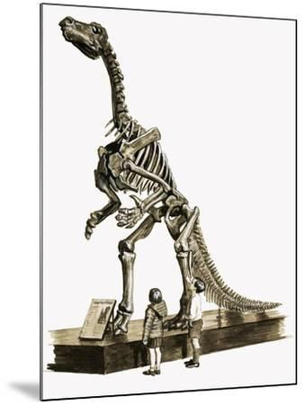 In the Days of the Dinosaurs: A Hundred Million Year Old Mystery-Roger Payne-Mounted Giclee Print