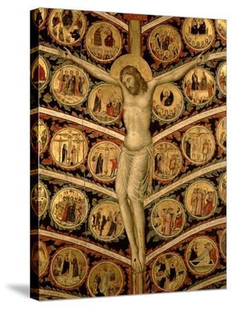 The Tree of Life, c.1310-Pacino Di Buonaguida-Stretched Canvas Print