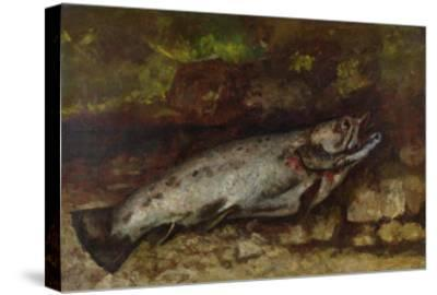 The Trout, 1873-Gustave Courbet-Stretched Canvas Print