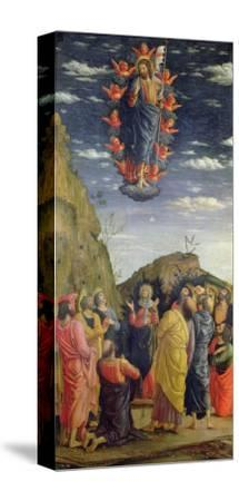 The Ascension, Left Hand Panel from the Altarpiece, c.1466-Andrea Mantegna-Stretched Canvas Print