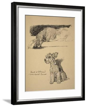 Irish Wolfhound and Wire-Haired Terrier, 1930, Just Among Friends, Aldin, Cecil Charles Windsor-Cecil Aldin-Framed Giclee Print