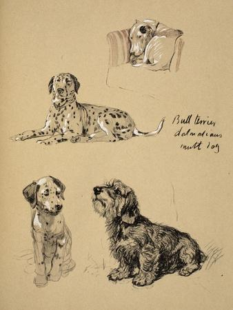 Bull Terrier, Dalmatians and Mutt Dog, 1930, Just Among Friends, Aldin, Cecil Charles Windsor-Cecil Aldin-Framed Giclee Print