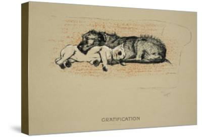 Gratification, 1930, 1st Edition of Sleeping Partners-Cecil Aldin-Stretched Canvas Print