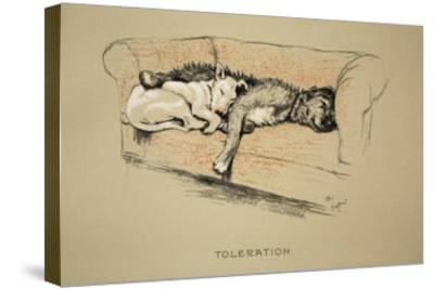 Toleration, 1930, 1st Edition of Sleeping Partners-Cecil Aldin-Stretched Canvas Print