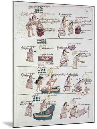 Page from the Codex Mendoza, Showing Discipline and Chores Assigned to Children, Mexico, c.1541-42--Mounted Giclee Print