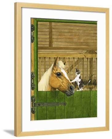 Unidentified Horse and Playful Kitten--Framed Giclee Print