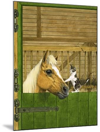 Unidentified Horse and Playful Kitten--Mounted Giclee Print