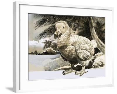 The World of Nature: The Mystery Bird from Mauritius--Framed Giclee Print