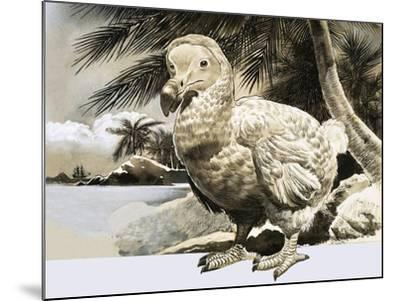 The World of Nature: The Mystery Bird from Mauritius--Mounted Giclee Print